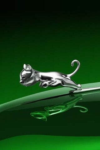3d Iphone Wallpapers Background Lock Screens Silver Cat On Green