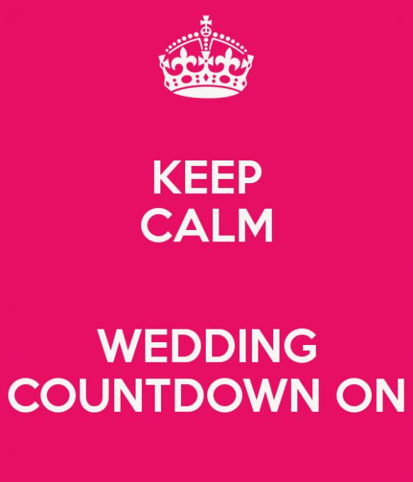 Wedding Day Countdown The Bride Wedding Countdown Keep Calm Wedding Wedding Countdown Quotes