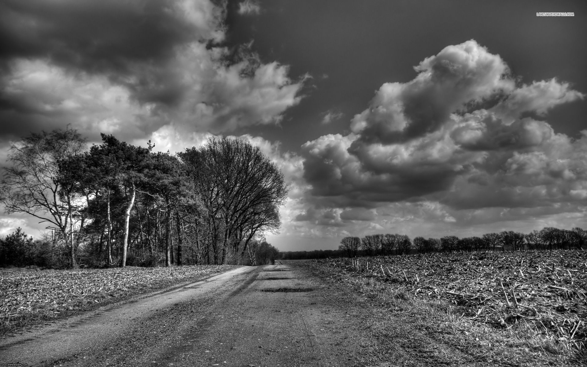Country Road Black And Whit Hd Wallpaper Background Images With