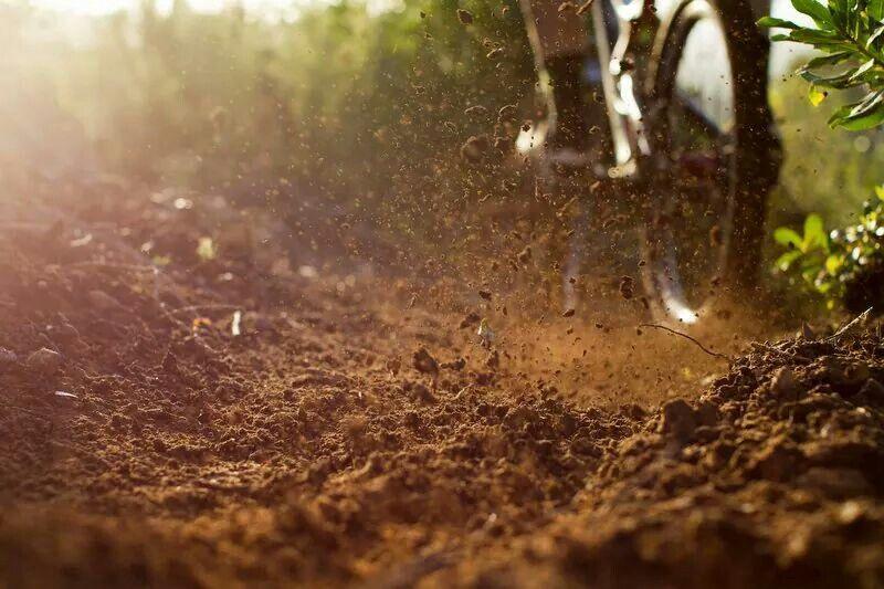 Dirt.