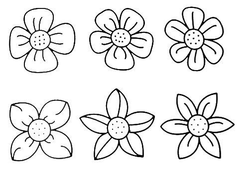 Pin By Rebekka Smith On Flower Fun Paper 2 Easy Flower Drawings Simple Flower Drawing Flower Coloring Pages