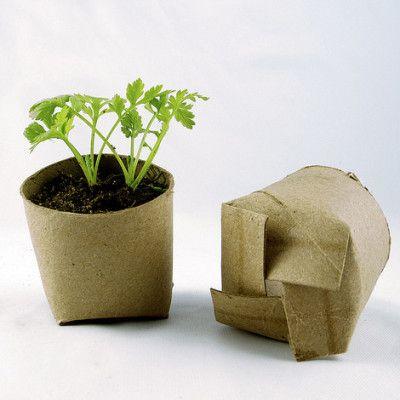 semis dans des rouleaux de papier toilette photo stacie cc flickr 100 id es maison. Black Bedroom Furniture Sets. Home Design Ideas