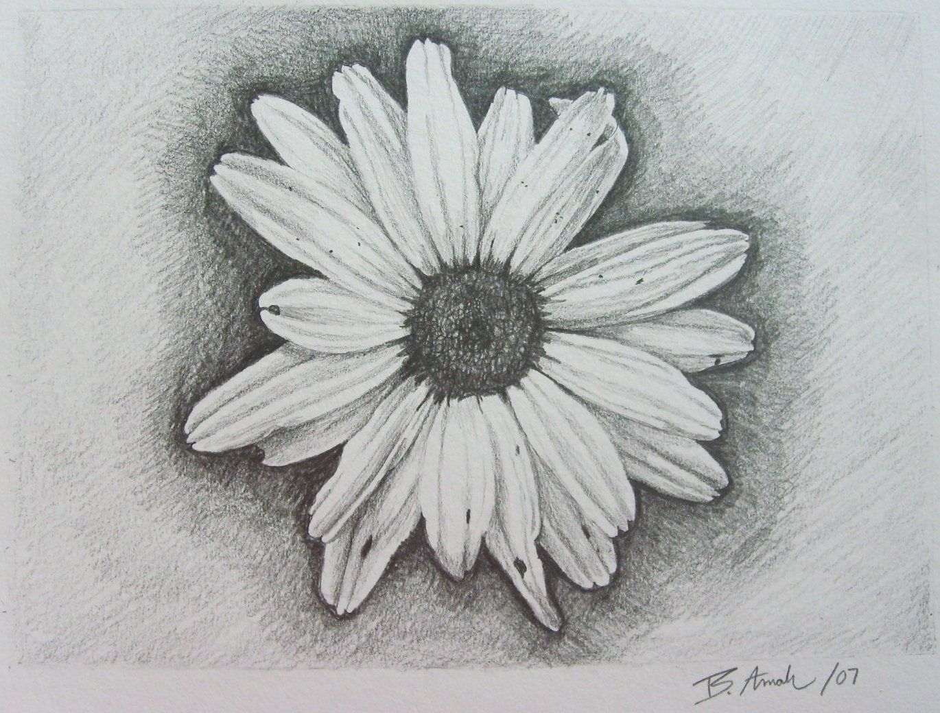 Daisy tattoo designs reminds me to be thankful for the littlest daisy tattoo designs reminds me to be thankful for the littlest things in life izmirmasajfo