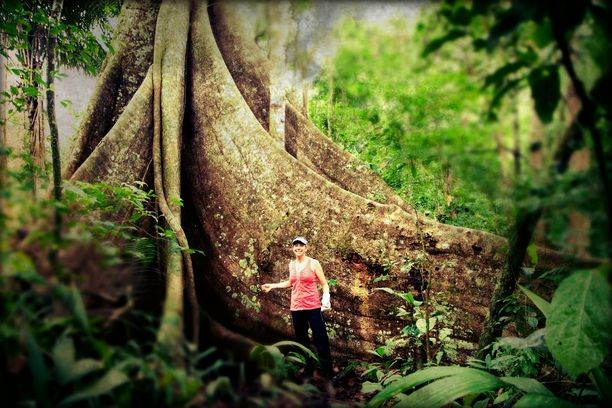 bc99d5c6afeb19 Tambopata National Reserve, Madre de Dios, Peru — by Earth Trekkers.  Awesome!