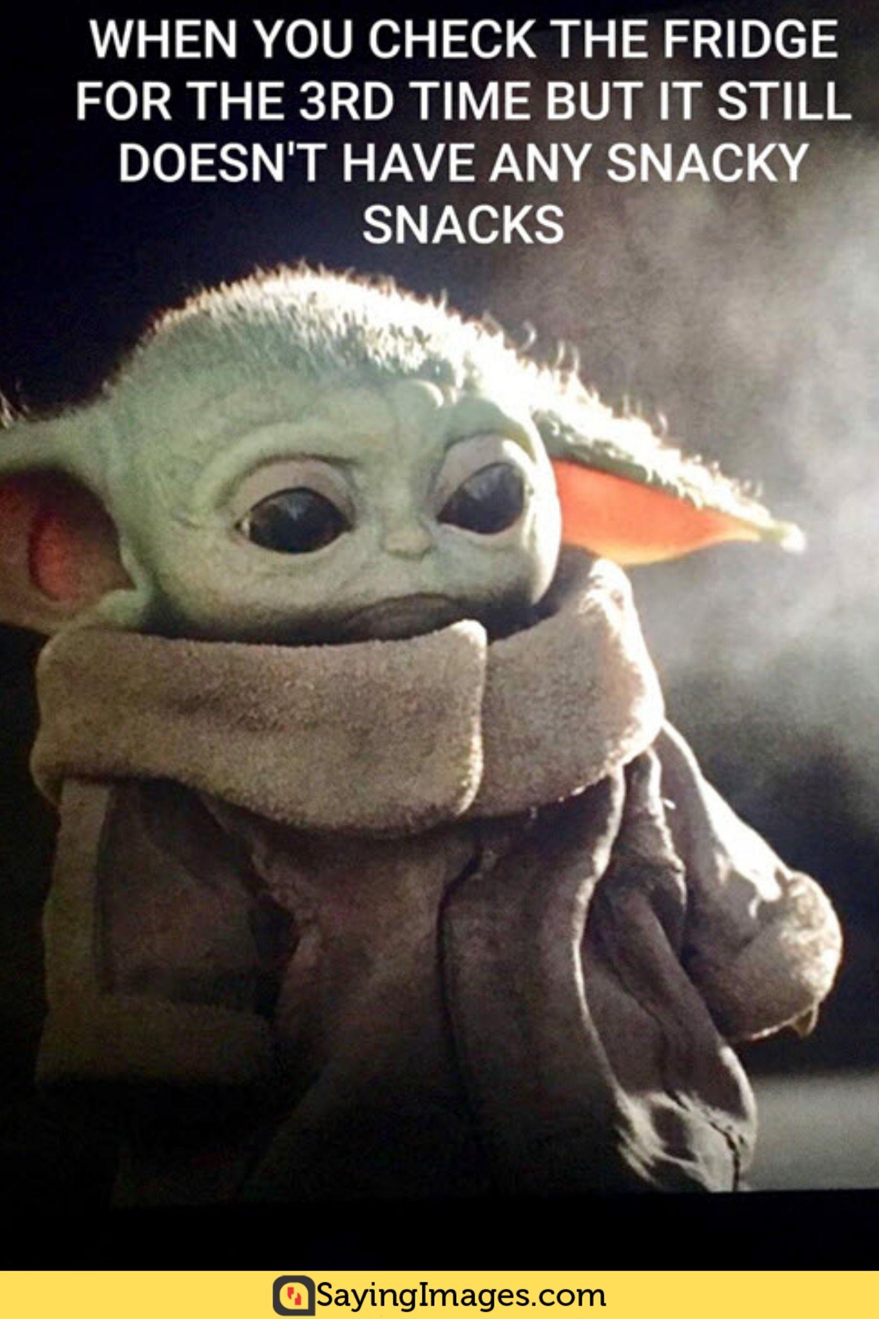 25 Super Adorable Baby Yoda Memes in 2020 Yoda meme