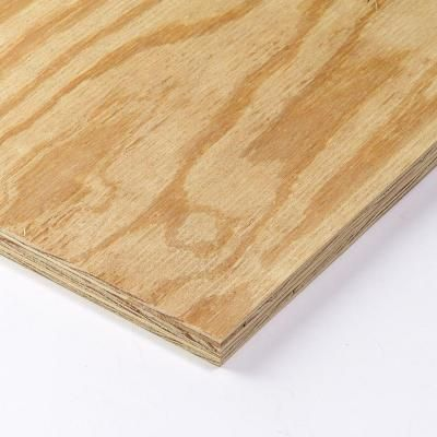 23 32 In X 4 Ft X 8 Ft Rtd Sheathing Syp 157946 Pine Plywood Plywood Home Depot