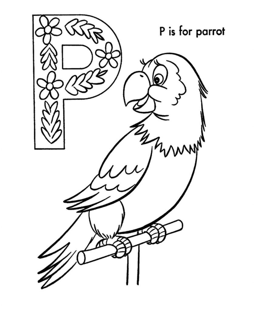 Pirate Parrot Colouring Sheet Color Activities Coloring For Kids Coloring Sheets For Kids