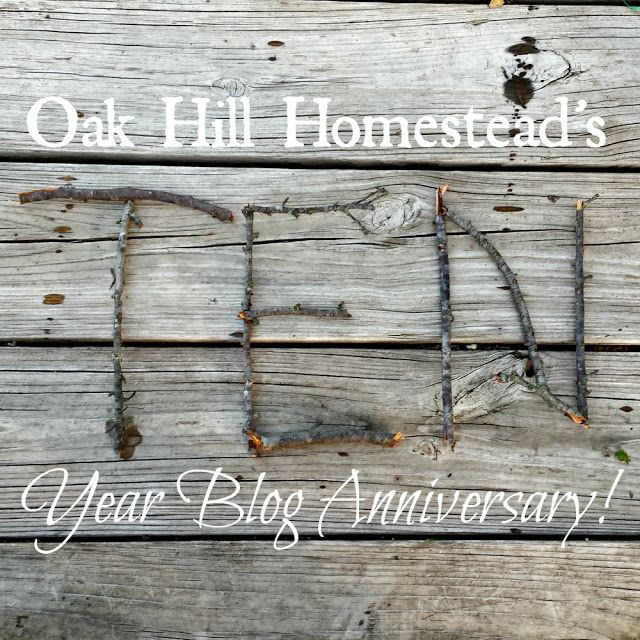 Oak Hill Homestead: Tenth Blog Anniversary - Ten Most Popular Posts