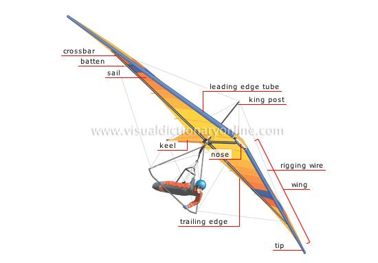 anatomy of hang glider | My Thoughts | Hang gliding, Gliders