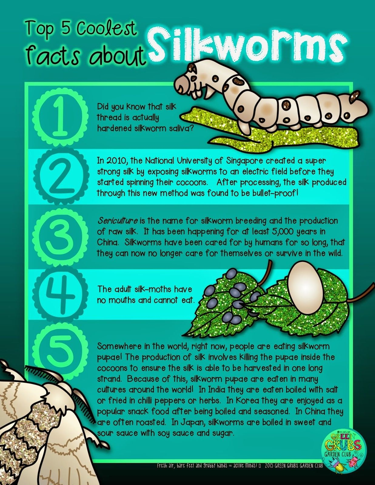 Free Printable Top 5 Coolest Facts About Silkworms Amp Silk Moths Green Grubs Garden Club Blog