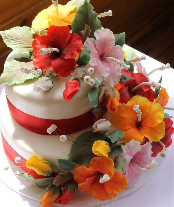 Kandice S Cakes Luau Cakes Hawaiian Cake Hibiscus Cake