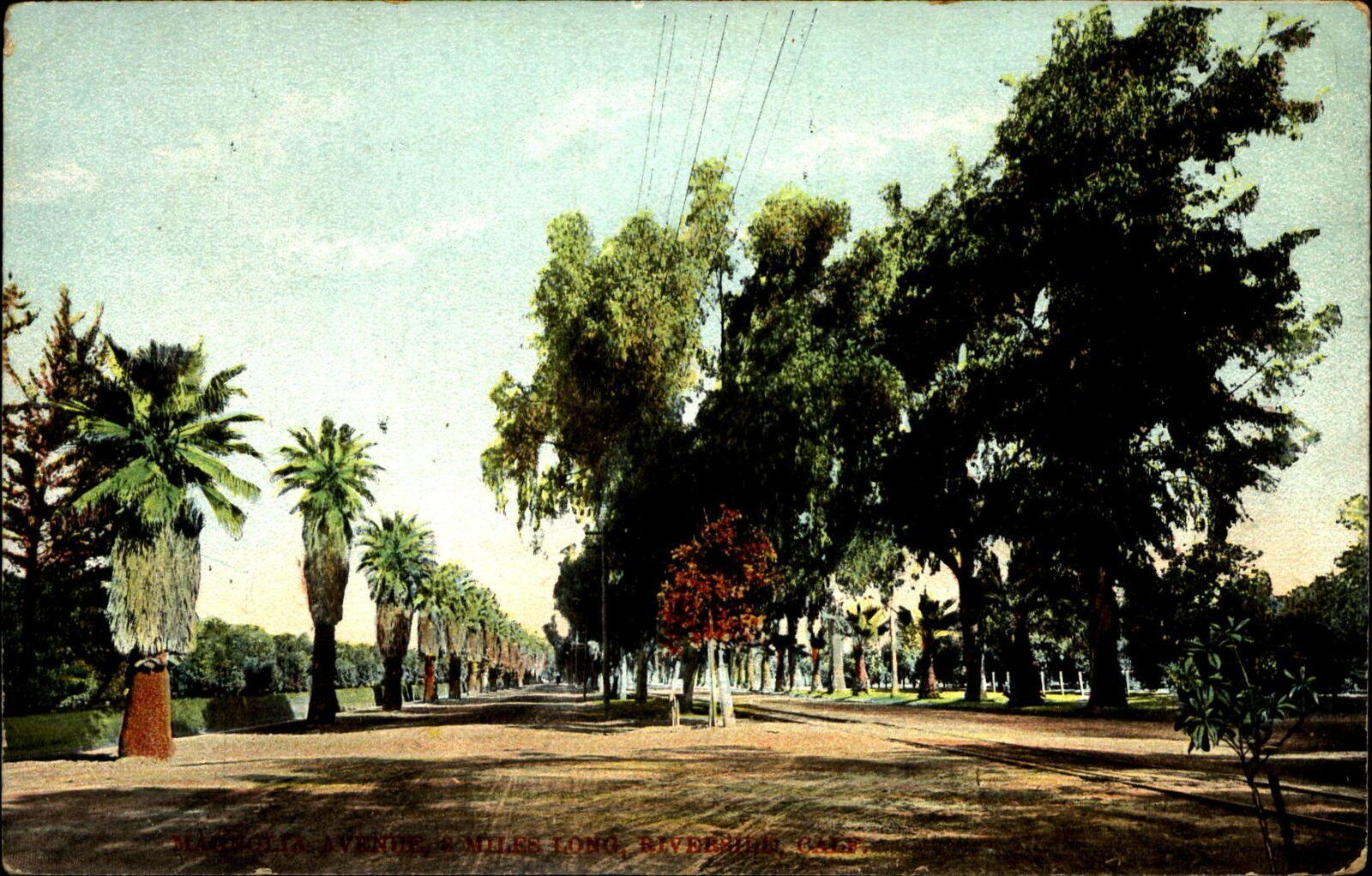 Magnolia avenue c 1900 riverside california street