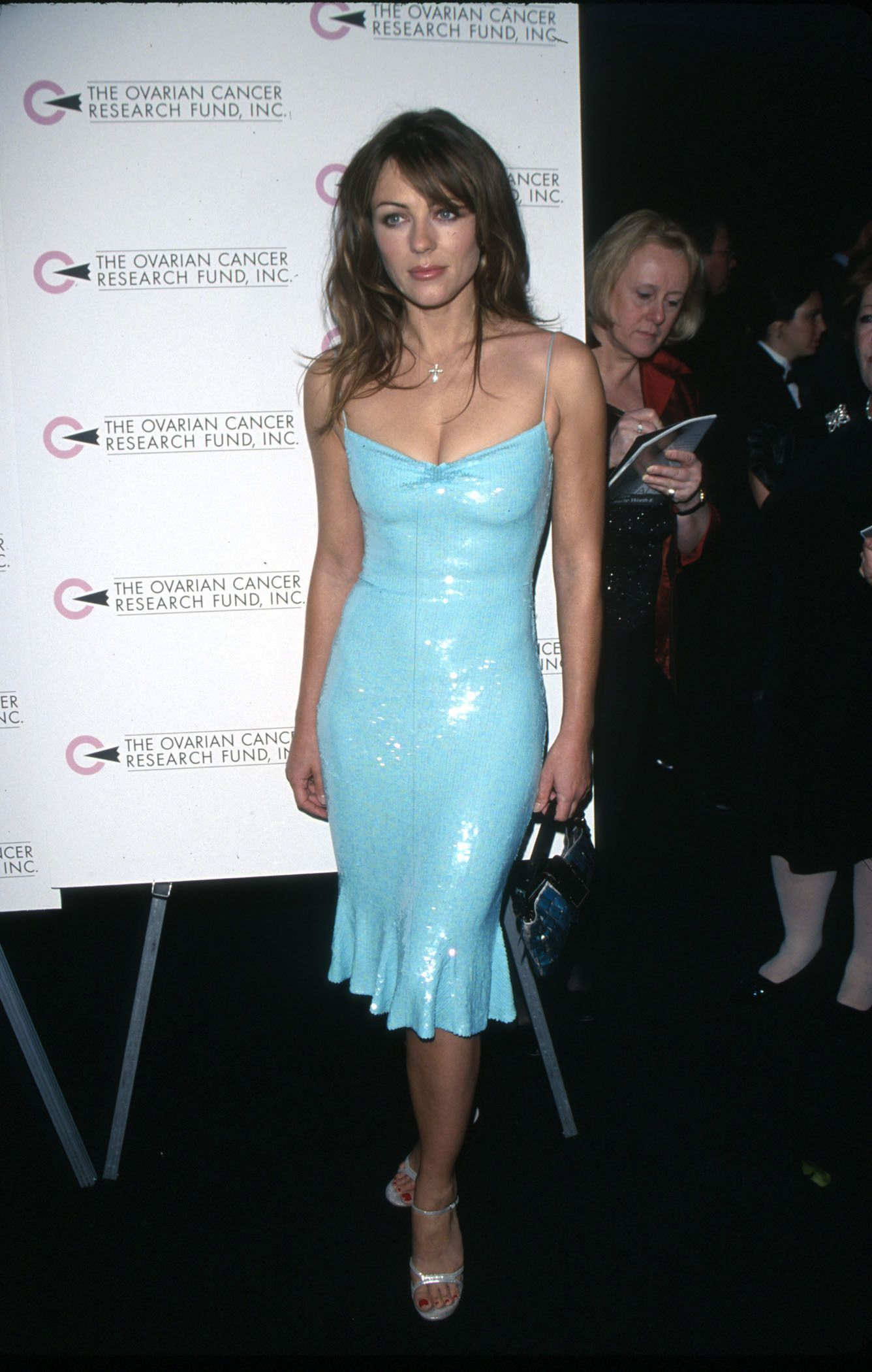 Elizabeth Hurley once took the red carpet in a dress held together by a few  safety pins: Pics in 2021 | Liz hurley dress, Elizabeth hurley, Hurley dress