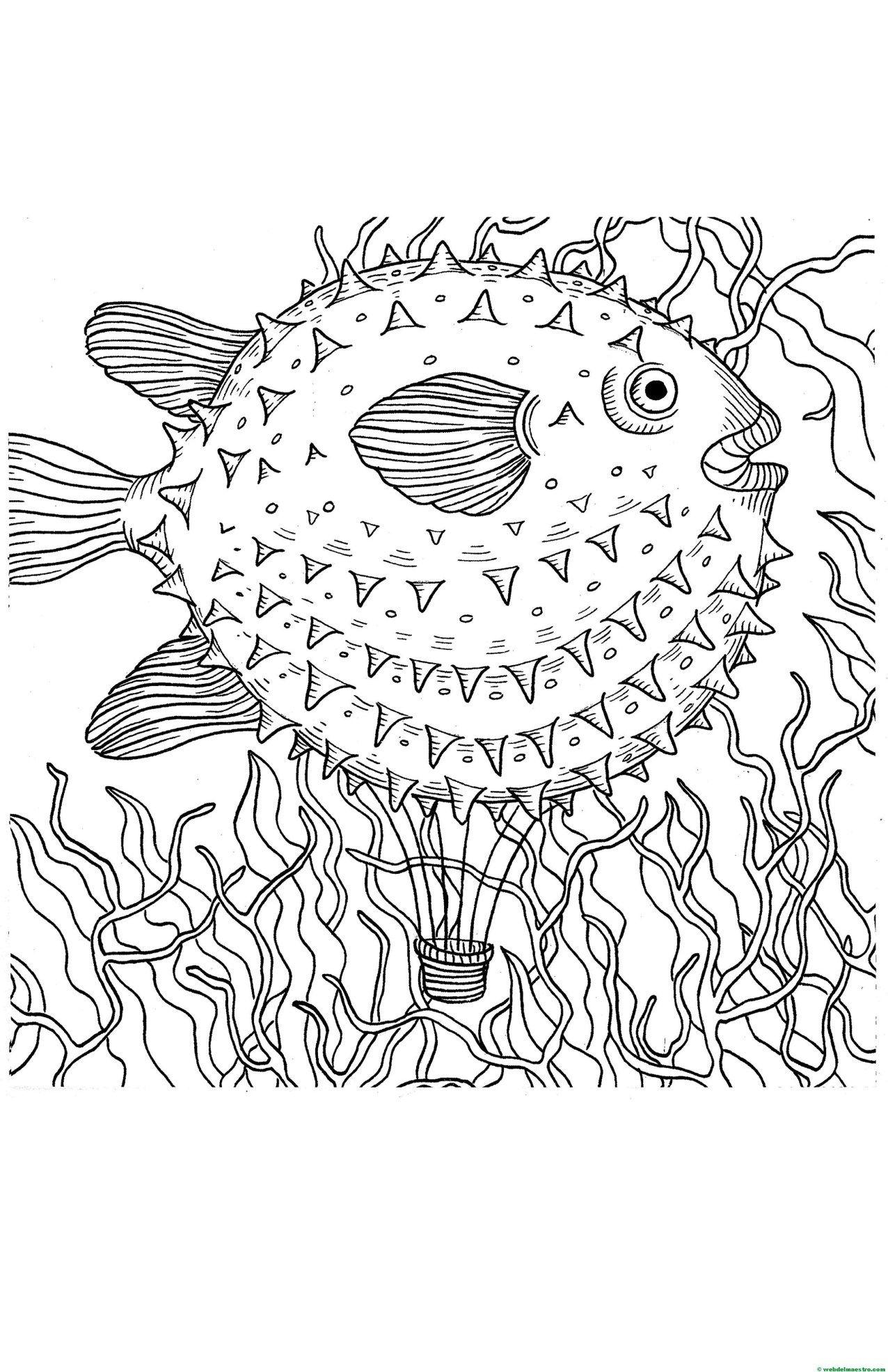 Dibujos antiestrés   Plástica   Pinterest   Pez globo, Dibujos para ...