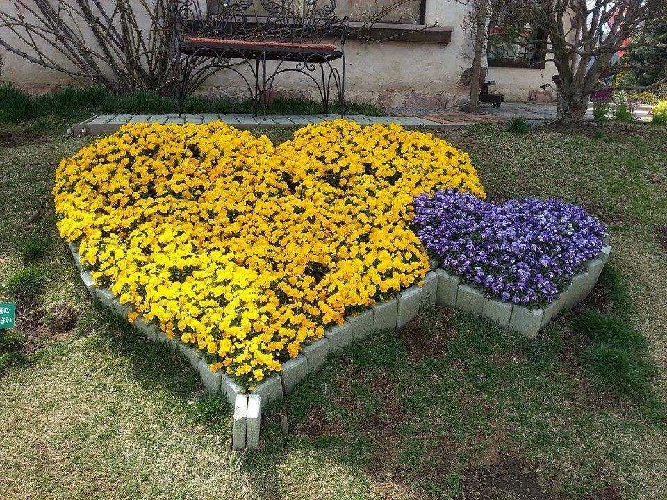 Cute Backyard Gardens : Cute garden idea  Backyard ideas  Pinterest