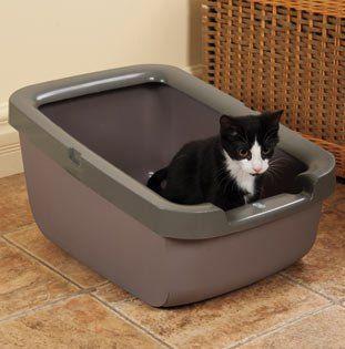 Catit Cat Litter Pan with Rim, Taupe Catit http://www.amazon.com/dp/B008F5QANI/ref=cm_sw_r_pi_dp_r3roxb0FXGB0R