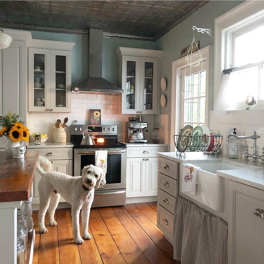 What Does A Kitchen Designer Do: If You're Wondering What Winston Is Thinking, Let Me Help