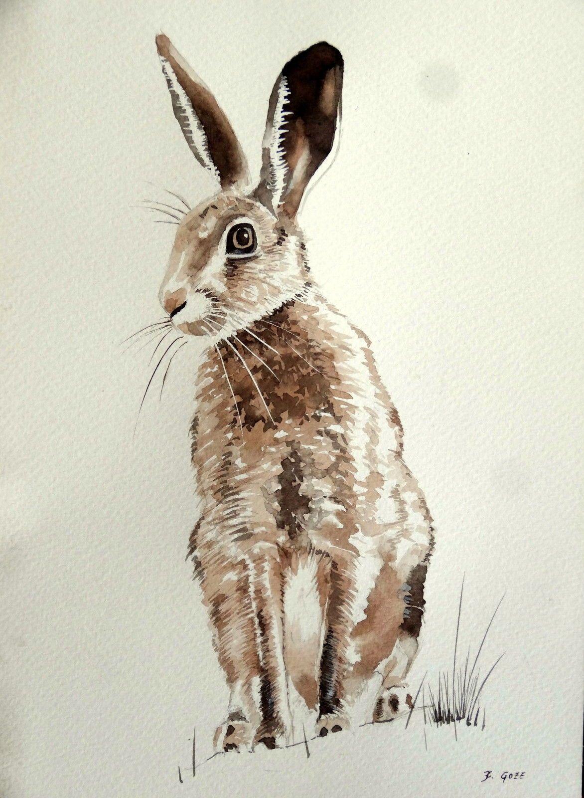Dessin lavis encre aquarelle sepia original li vre chasse - Dessin de chasse ...