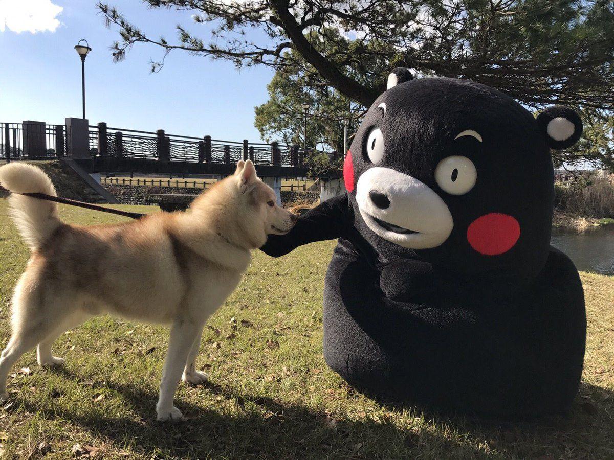 ㅤ(@bottomb_tsuki)さん | Twitter