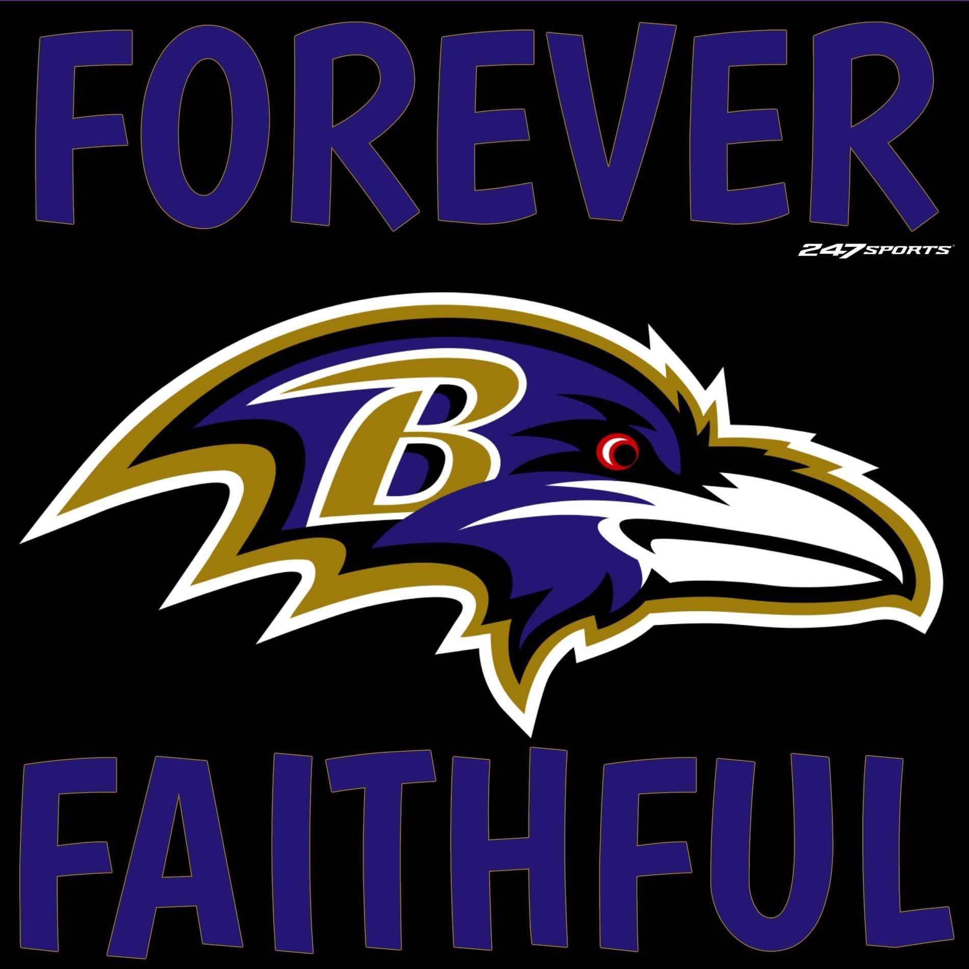 Pin by Vicky Graham on Loving my Ravens (With images