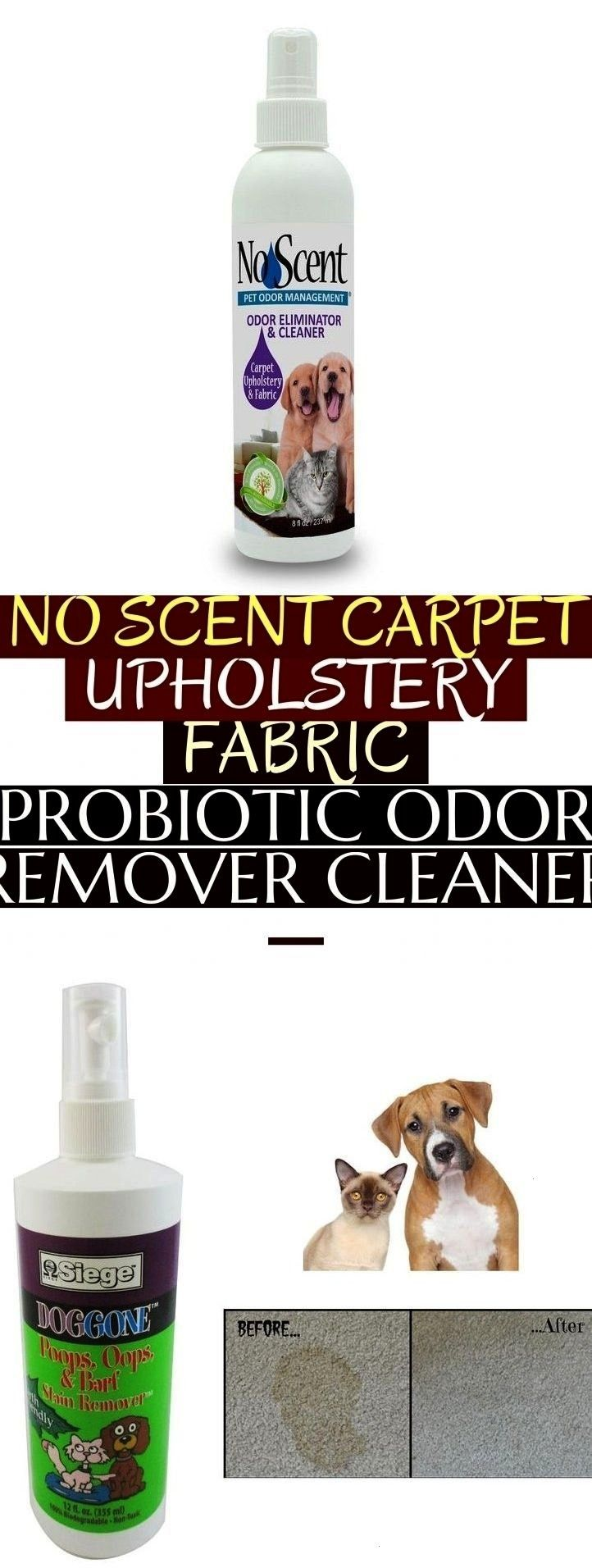 Scent Carpet Upholstery Fabric Probiotic Odor Remover Cleaner   No Scent Carpet Upholstery Fabric Probiotic Odor Remover Cleaner   no scent carpNo Scent Carpet Upholstery...