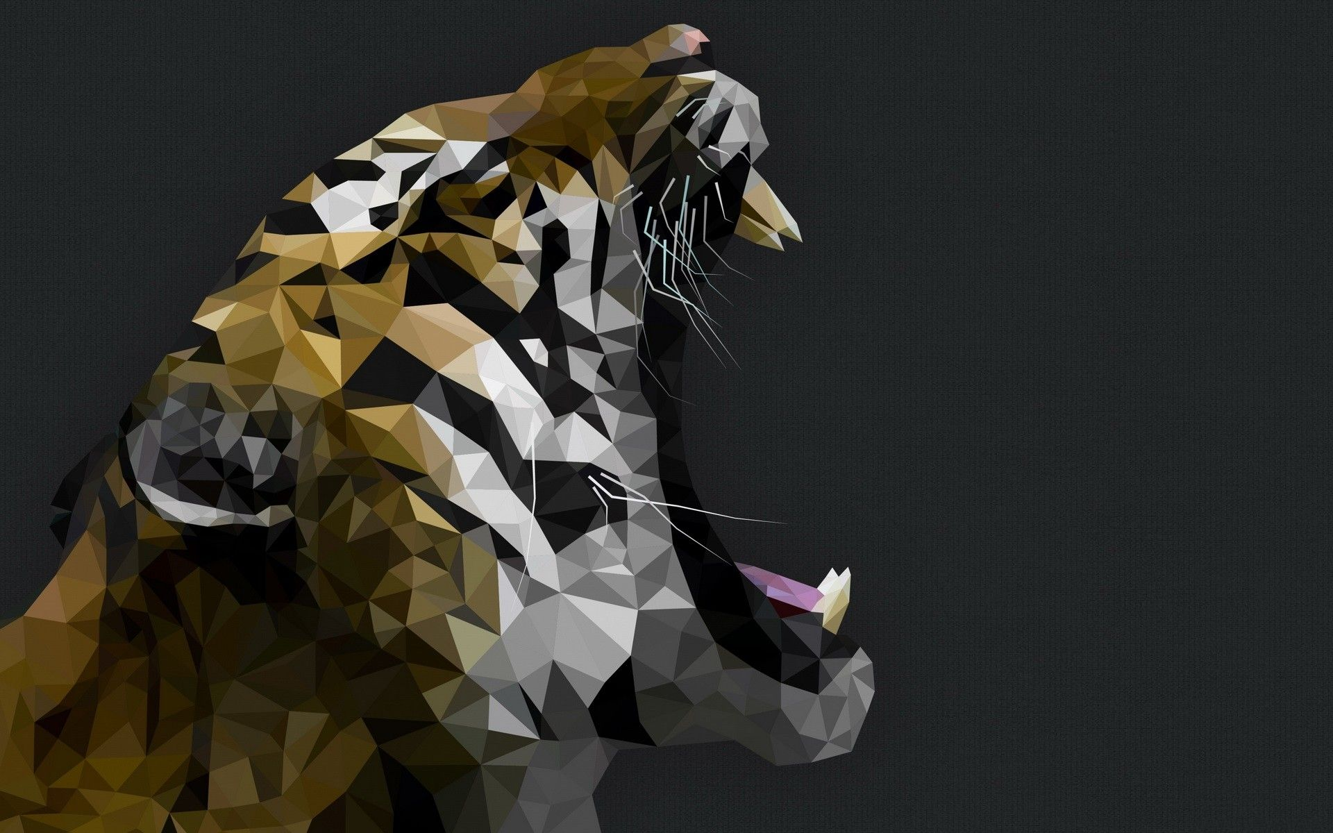 General 1920x1200 tigers gray background animals low poly