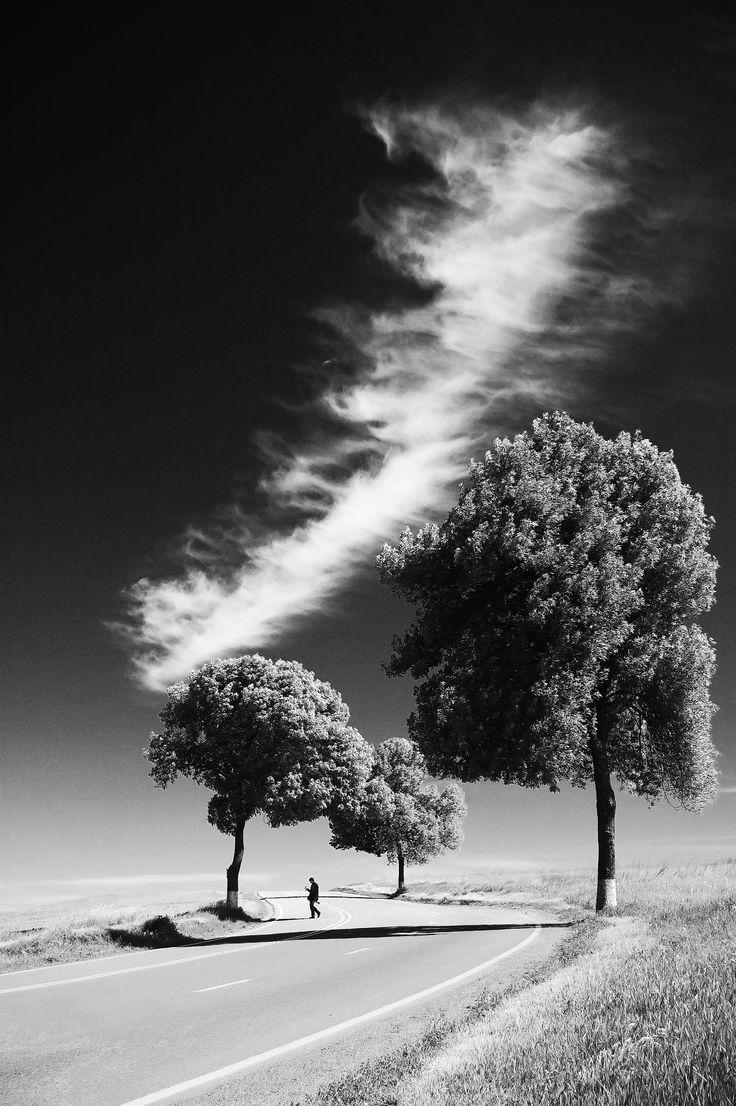 Bd6d998d1a952edcedf349268983e10e Jpg 736 1106 Black And White Landscape Nature Pictures Nature Images