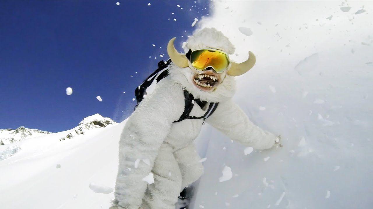 коты сноубордисты фото день