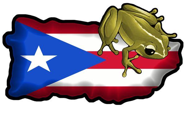 38+ Puerto rico coqui clipart ideas in 2021