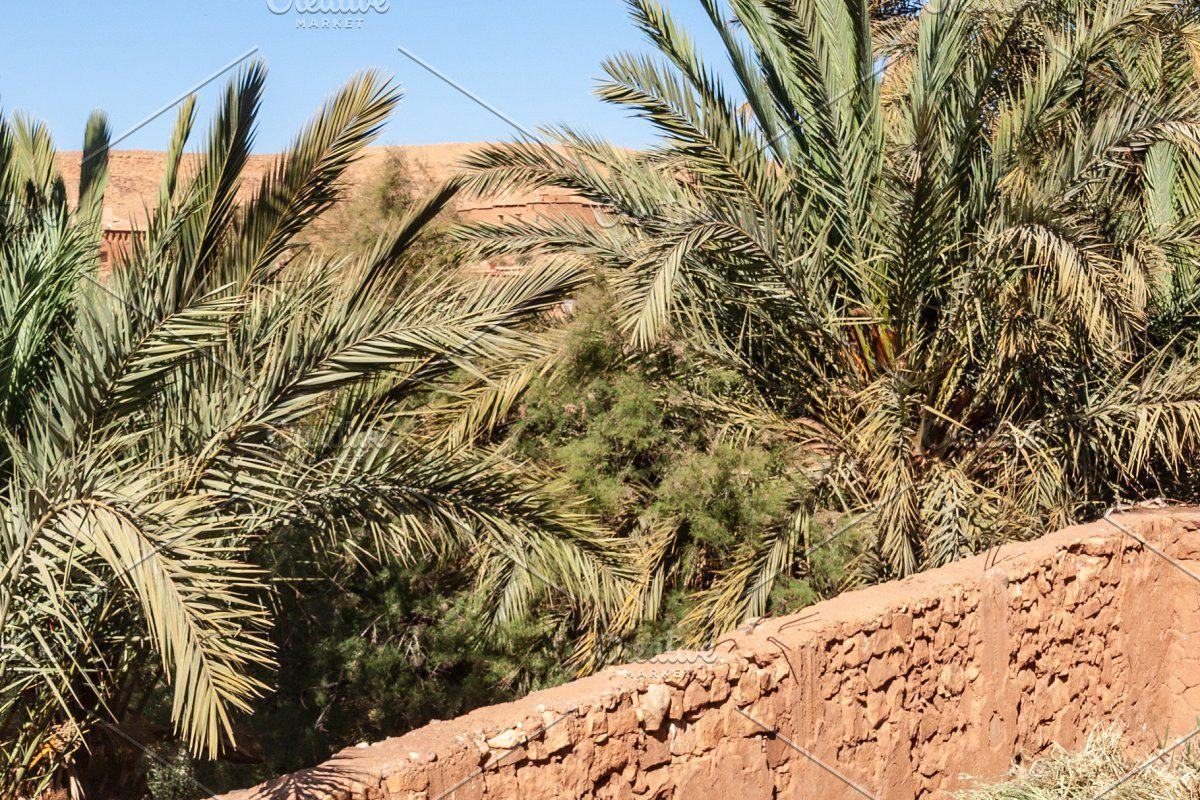 Photo of Gemstones and fossils shop, Morocco #Sponsored , #SPONSORED, #Ait#Ben#shop#Gemst…