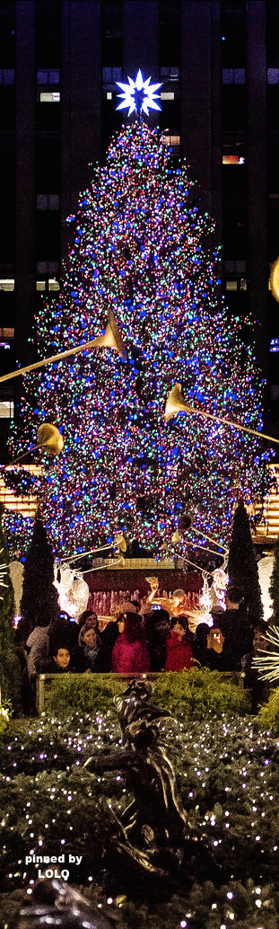 A Brief History Of The Christmas Tree In Rockefeller Center New York Christmas Rockefeller Center Christmas Rockefeller Center Christmas Tree