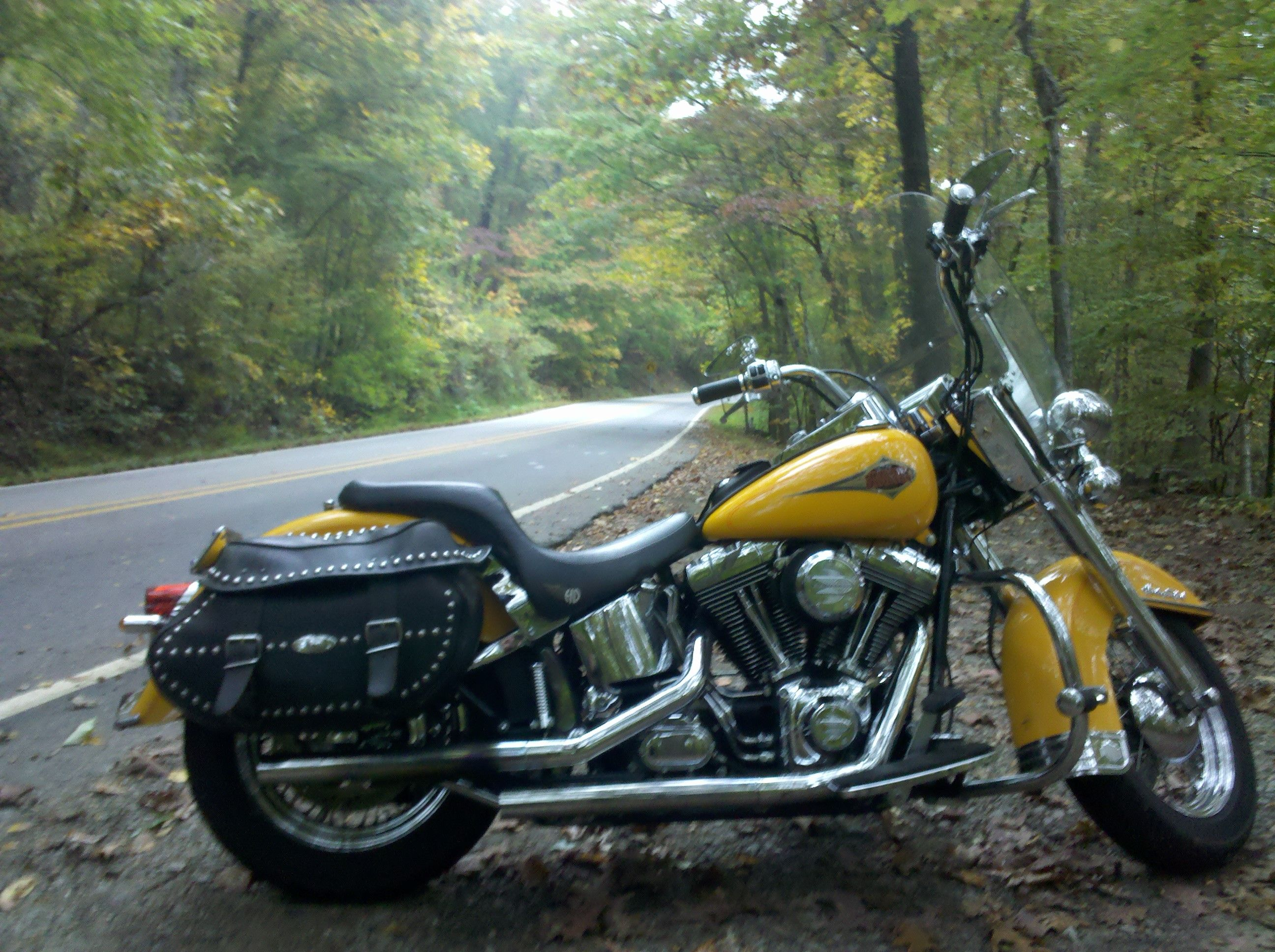 2000 Harley Davidson Heritage Softail Classic Yellow Oh Wait That Is Already In My Garage Silly Me Harley Harley Davidson Bikes Harley Davidson [ 1936 x 2592 Pixel ]