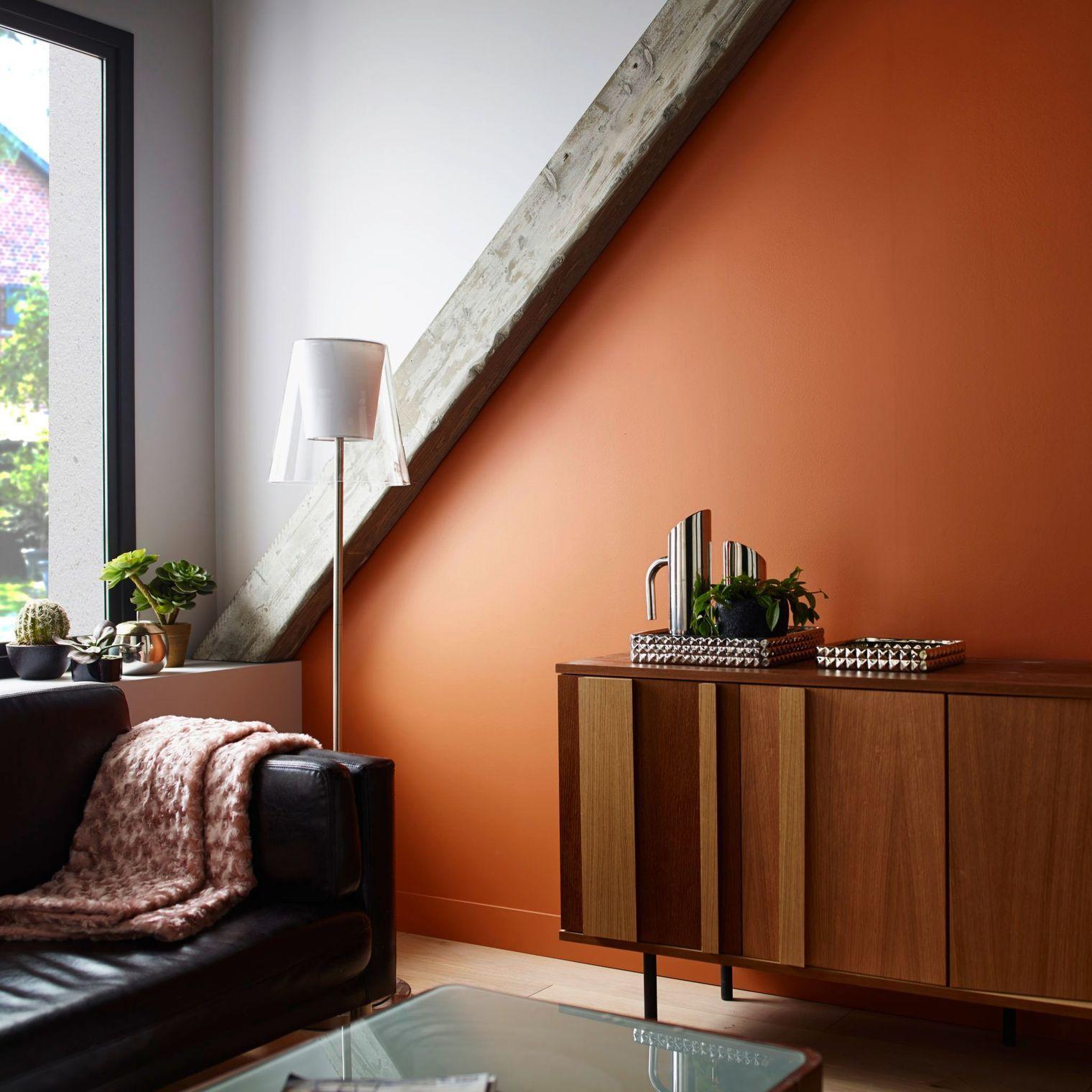 Couleur Pour Un Sejour peinture salon : 12 idées de couleur pour le séjour