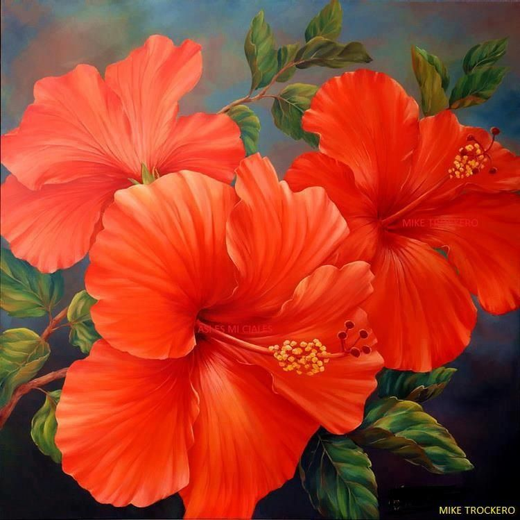 Amapolas Puerto Rico Puerto Rico 3 Painting Hibiscus