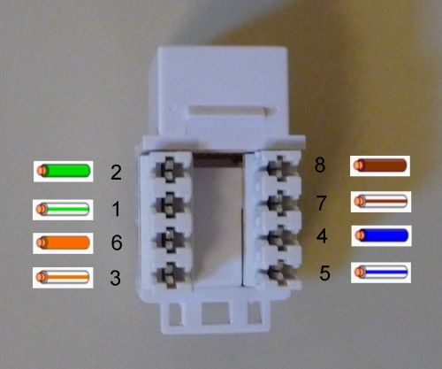 Techniques Data Wiring Wall Jack Home Network Plates On Wall