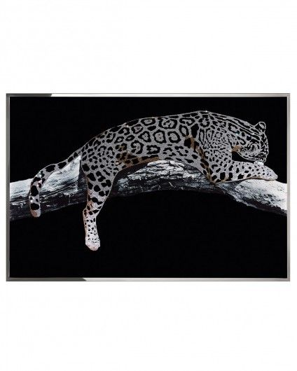 Leopardo  Arts