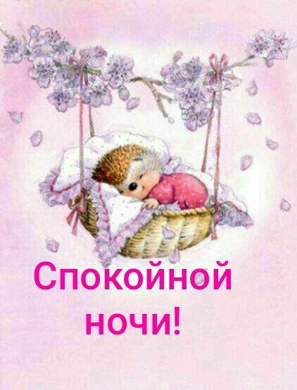 Открытки, открытка спокойной ночи ежик