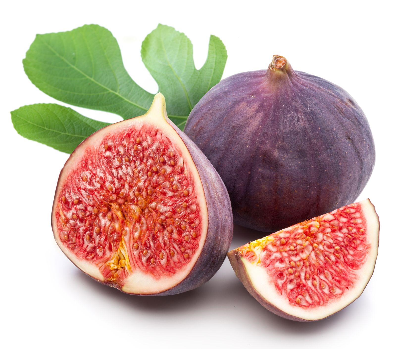 Nothing stops it from producing tons of purple figs The figs are sweet and juicy with crunchy seeds