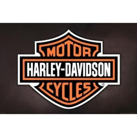 Harley Davidson Logo Poster Poster Print Walmart Com In 2020 Harley Davidson Logo Harley Harley Davidson