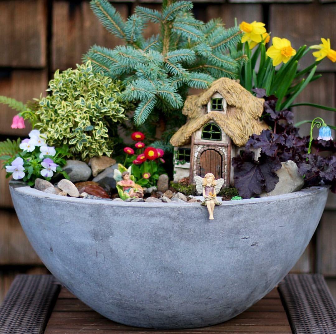 veces se ven mejor que los masivos son ms lindo y porttil cuando se trata de jardinera y decoracin del jardn le he mostra with jardines miniatura - Jardines En Miniatura
