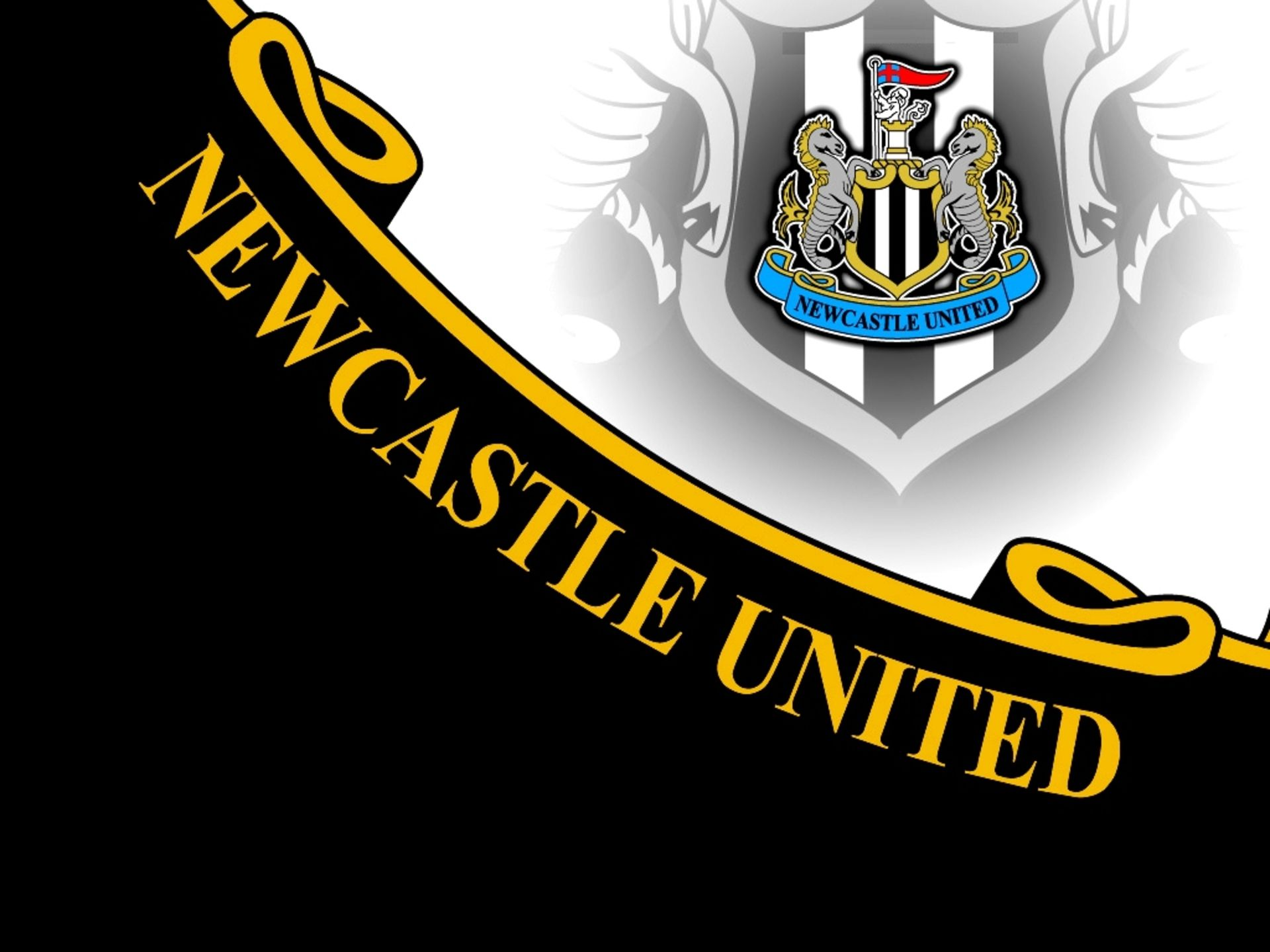 Newcastle United F C Wallpapers Wallpapersin4k Net