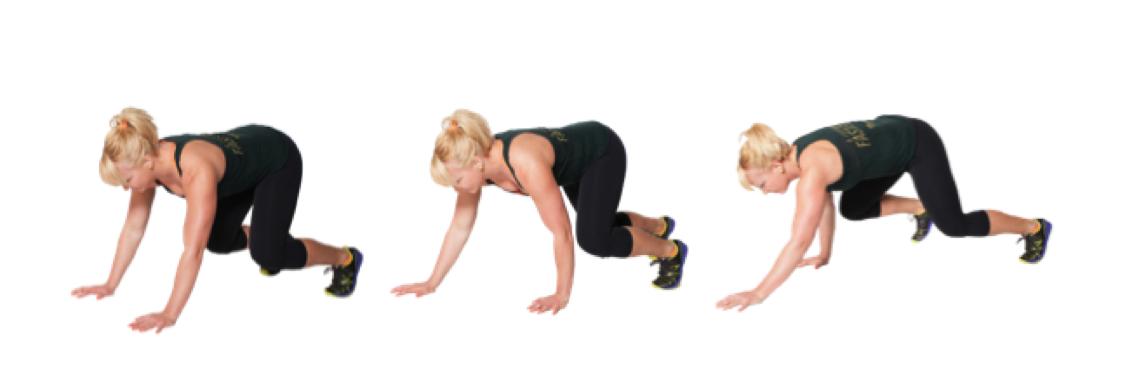 Image result for bearcrawl stretch