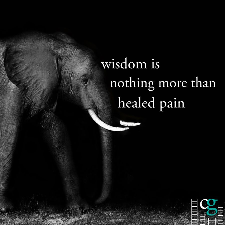 Quotes About Life Love Wisdom: Best 25+ Elephant Quotes Ideas On Pinterest