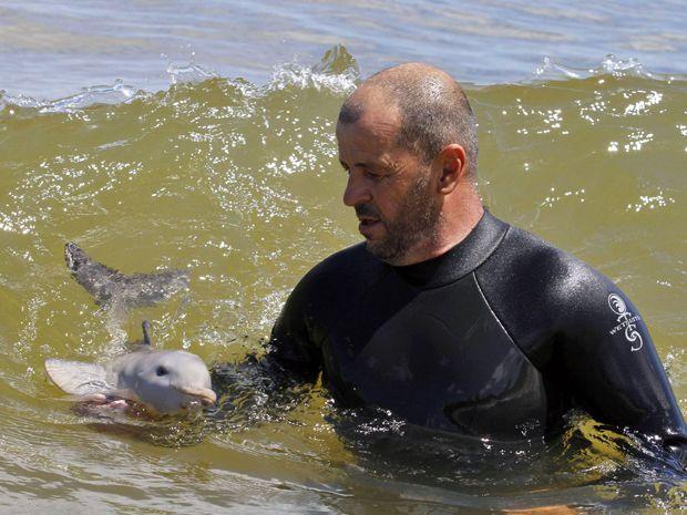 Filhote de golfinho (Foto: Andres Stapff/Reuters)