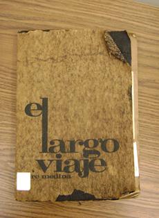 Image result for El Viaje Largo by Tere Medina