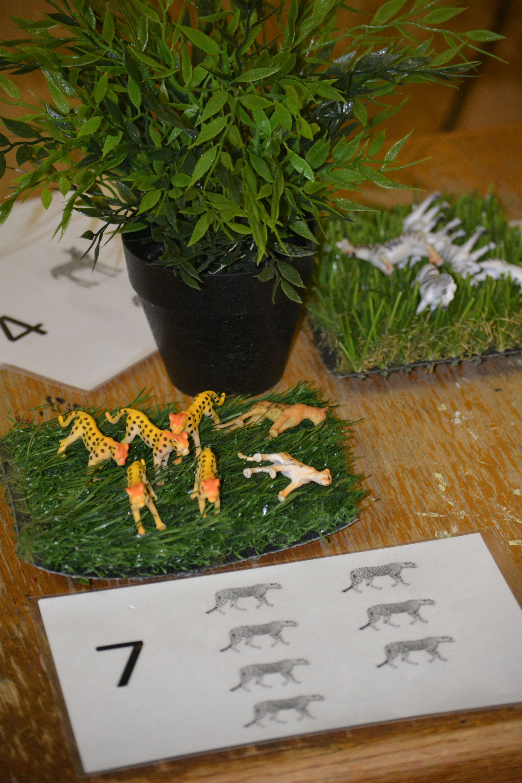 Counting Safari Animals In Preschool