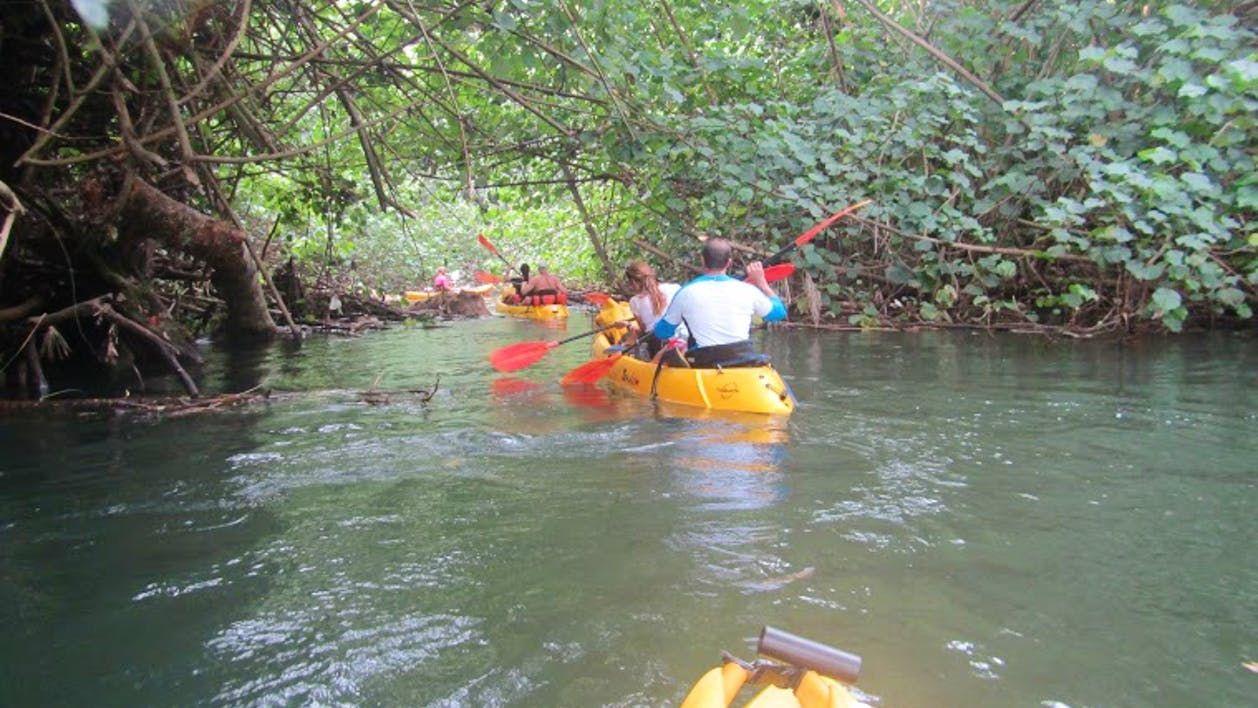 Enjoy a nice balance between kayaking, hiking and swimming