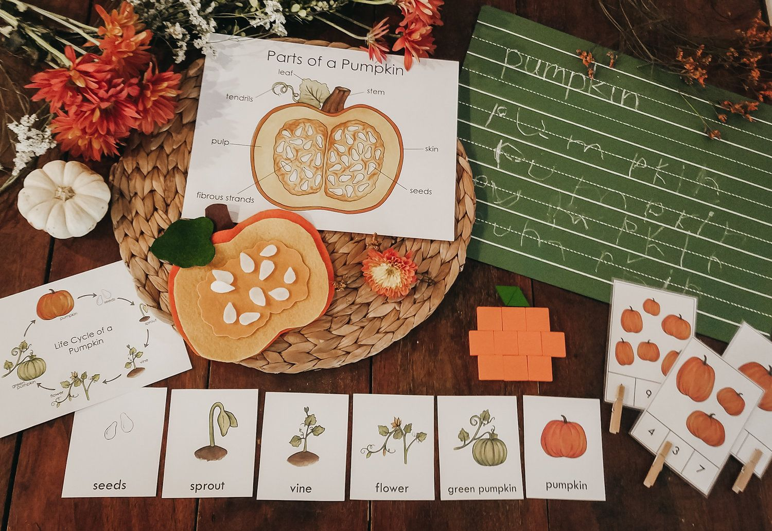 Pumpkin Invitation Bundle Unit Study With Images