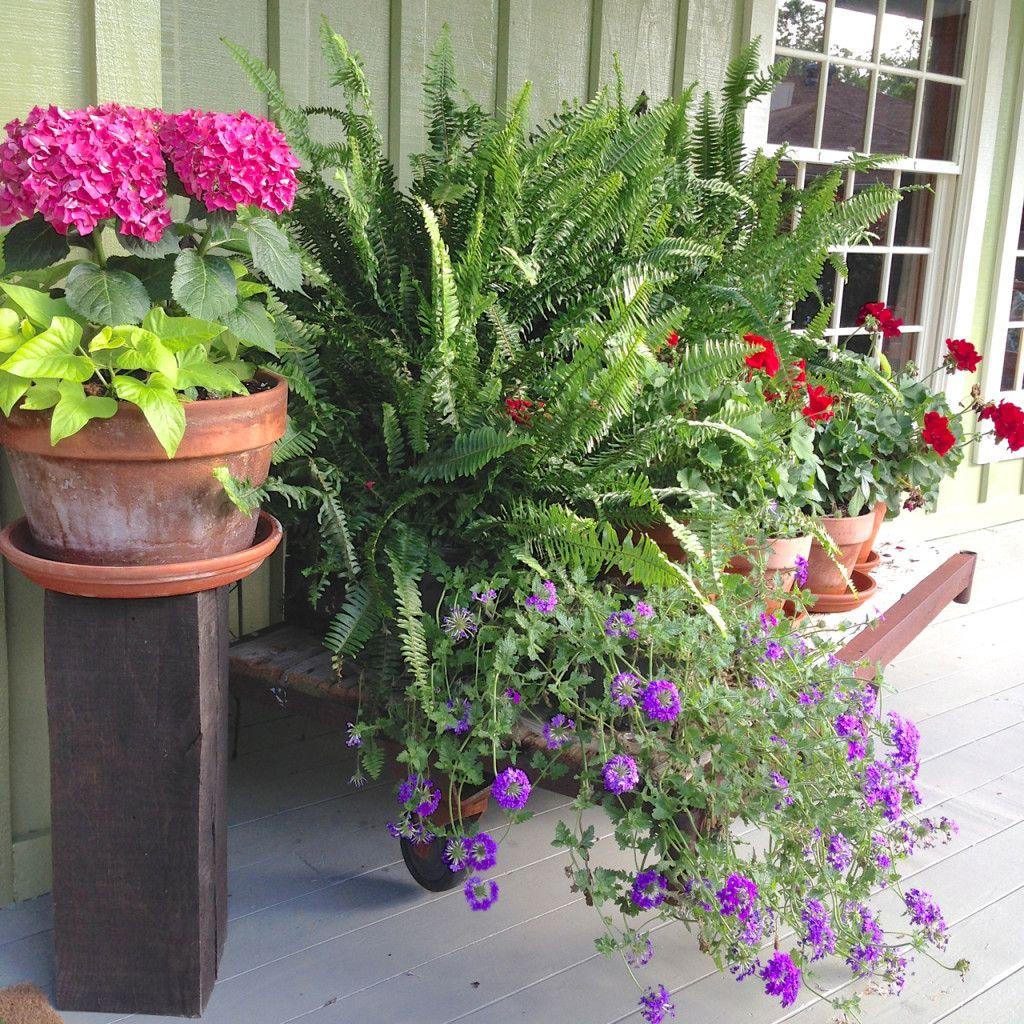 Outdoor Hanging Planter Pot Indoor Flower Plant Garden Basket Pots LC