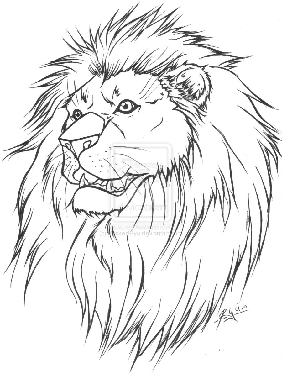 Line Drawing Animal Tattoos : Clip art drawings lion tattoo lineart version by